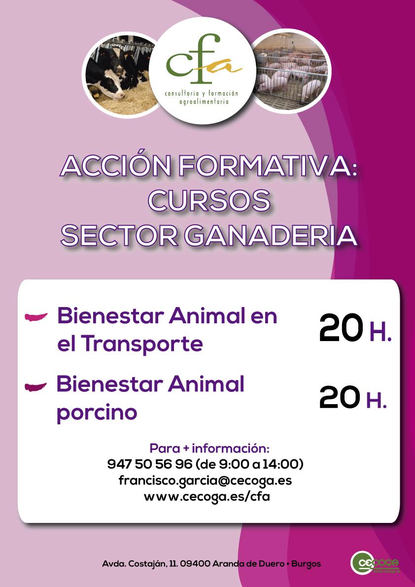 curso-animales