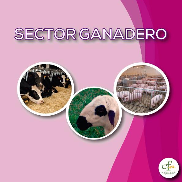 sector_ganadero