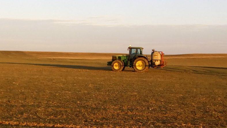 El cereal mejora mucho gracias a diez días de lluvias casi continuadas