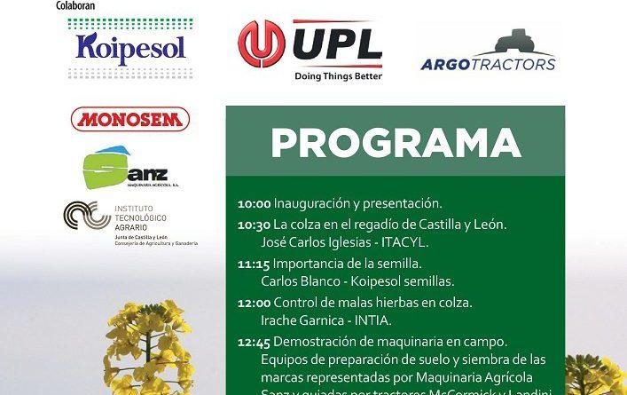 CAMPO organiza una Jornada Técnica sobre el cultivo de la colza el 25 de agosto en Villamarciel (Valladolid)