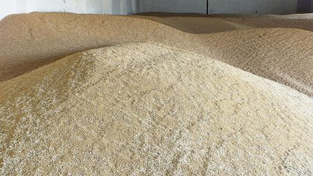 Para almacenar cereal de la mejor manera
