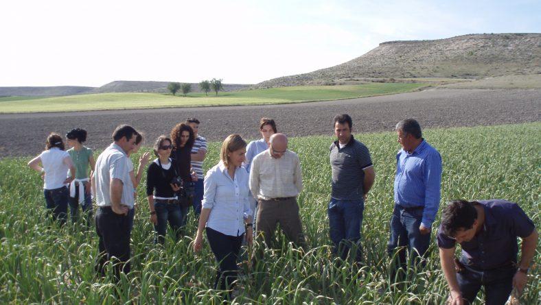 El Gobierno duplica la ayuda complementaria a los jóvenes agricultores dentro de los pagos directos de la PAC