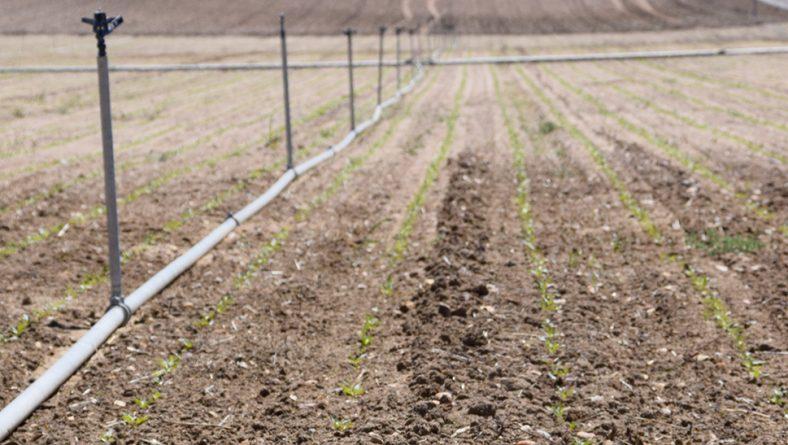 Reclaman el pago inmediato de las ayudas a seguros agrarios de 2015 y 2016