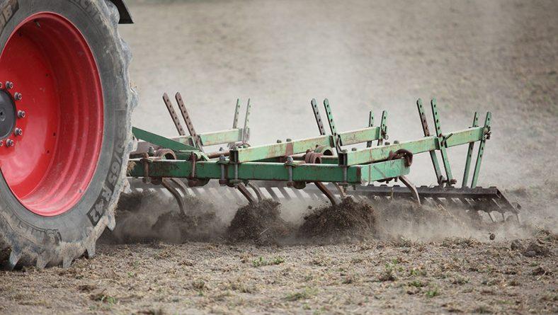 La industria remolachera confía en alcanzar las 30.000 hectáreas de cultivo