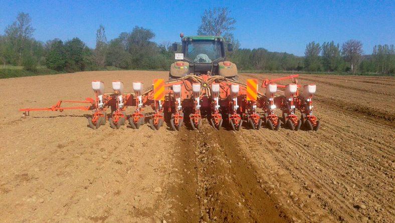 La siembra de maíz en León, a punto de finalizar