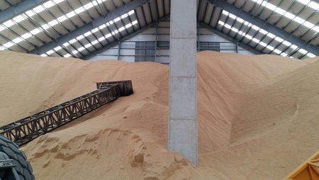 Consejos sanitarios para conservar el grano hasta que llegue el momento de vender