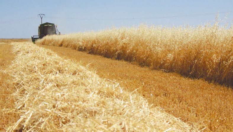 Fórmulas de pago que atraen al agricultor