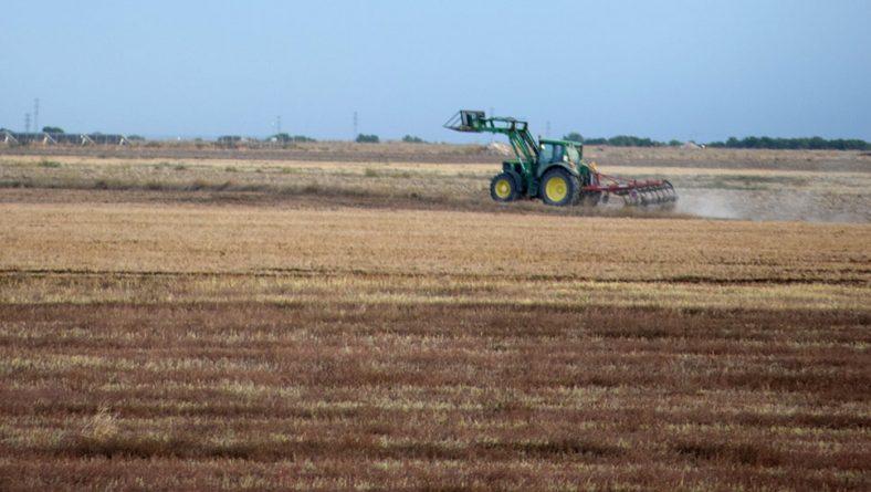 Este domingo CAMPO repasa la situación de los cultivos, marcada por la falta de lluvias