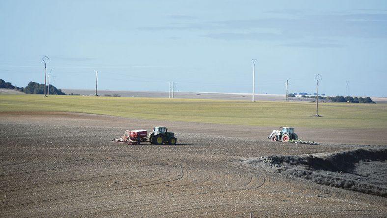 Castilla y León afronta la última semana de noviembre con la mitad del cereal sin sembrar