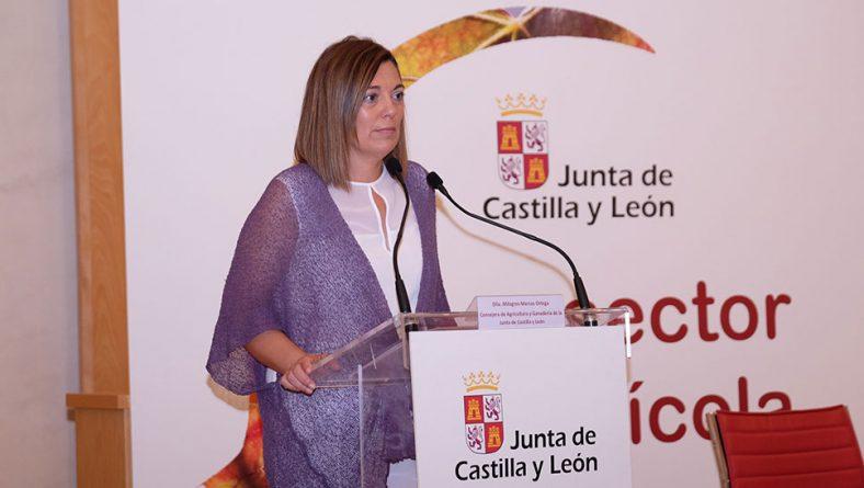 Itacyl estudia ampliar las partes de la vaca aptas para elaborar Cecina de León