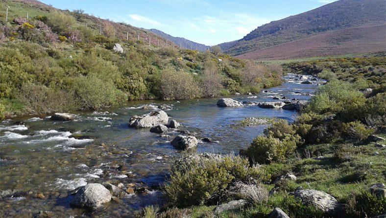 La CHD insta a la ciudadanía a hacer un uso responsable del agua