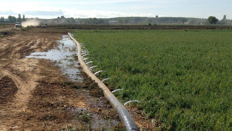 COAG solicita la inmediata publicación de las ayudas para el suministro de agua a las explotaciones ganaderas ante la sequía del presente año
