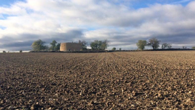 La siembra de cereal retomará la actividad con óptimas perspectivas cuando la humedad dé tregua