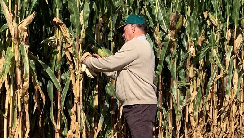 León frena la caída en el número de agricultores activos