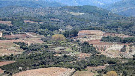 Aclaraciones de ASAJA Castilla y León sobre los títulos de las fincas que figuran en la PAC