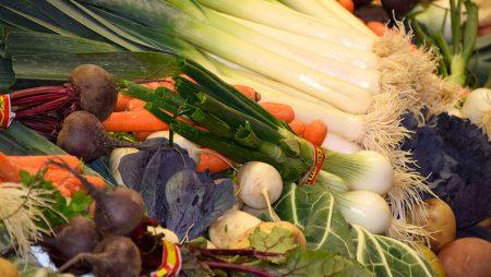 La exportación española de frutas y hortalizas crece el 5,5% en volumen pero baja el 2% en valor