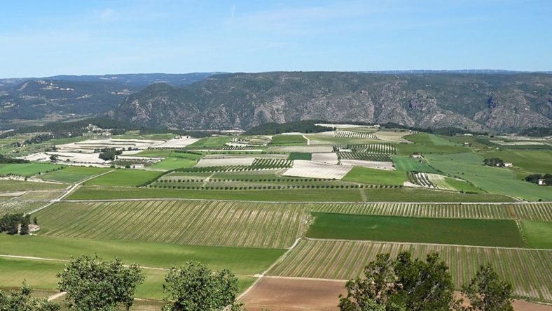 La Junta resuelve las solicitudes de incorporación de nuevos contratos plurianuales de las medidas de agroambiente y clima y de agricultura ecológica