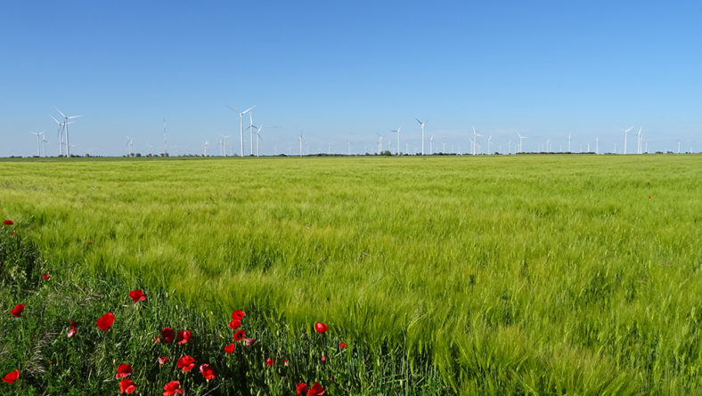 """El ministerio aboga por hacer de las nueva estrategia ambiental de la UE """"una oportunidad"""" para los agricultores"""