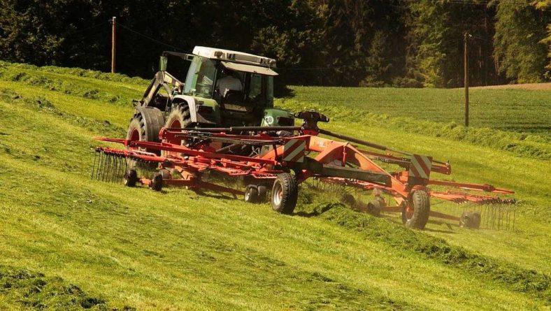 Comienzan a cotizar en la Lonja de León la alfalfa en rama, la veza y forrajes
