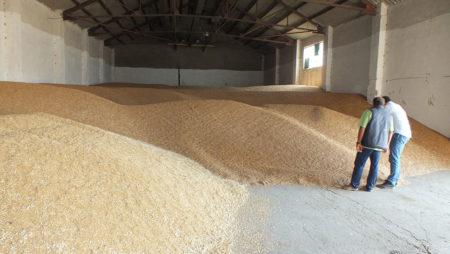 La Consejería de Agricultura prepara el decreto sobre mercados de productos agrarios en origen y mesas de precios de Castilla y León
