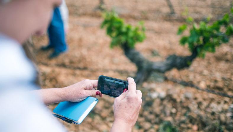 El Itacyl refuerza la formación 'online' para potenciar el uso de tecnologías innovadoras en la industria agroalimentaria de Castilla y León