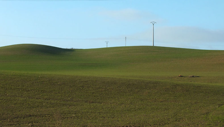 Las siembras de cereal en Castilla y León avanzan bien, con el condicionante de las lluvias
