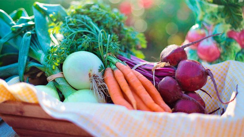 España solicita a la UE 313 millones de euros del régimen de ayudas de frutas y hortalizas para 2021