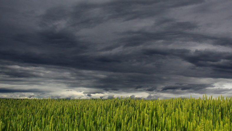 Que las tormentas no agobien tus cultivos